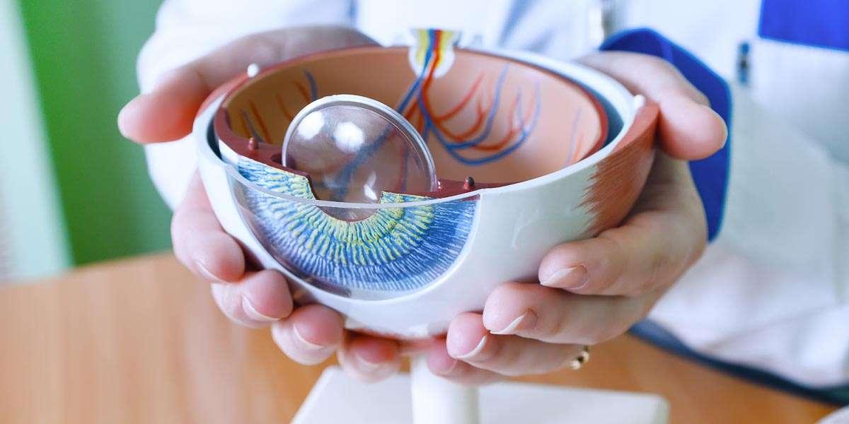 Comprehensive Eye Health